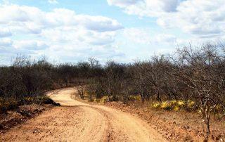 Estrada Betania em Custódia, sertão de Pernambuco